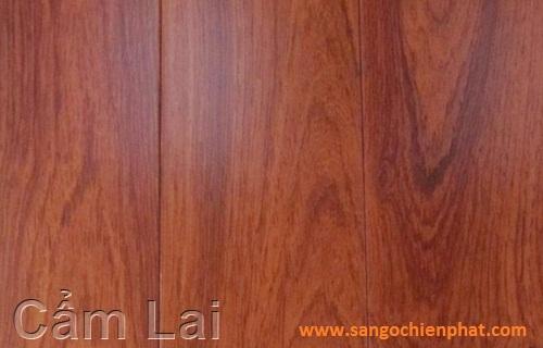 Sàn gỗ Cẩm Lai